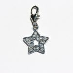 Star Charm | Find your light